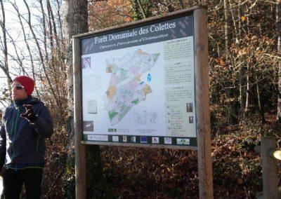 Parcours d'Orientation, Forêt Domaniale des Colettes, Allier | Actu